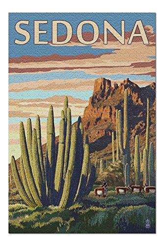 Sedona, Arizona - Organ Pipe Cactus (20x30 Premium 1000 Piece Jigsaw Puzzle, Made in -