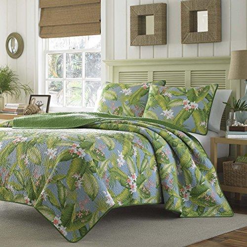 Antique Pattern (3 Piece King, Antique Classic Floral Pattern Quilt Set, Traditional Gorgeous Modern Vintage Seaside Design, Unique Tropical Designer Themed, Beautiful Bedding, Adorable Green, Grey Color Unisex)