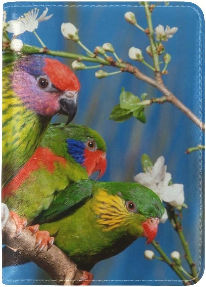 JiaoL Parrots Colorful Bird Branch Leather Passport Holder Cover Case Travel One Pocket
