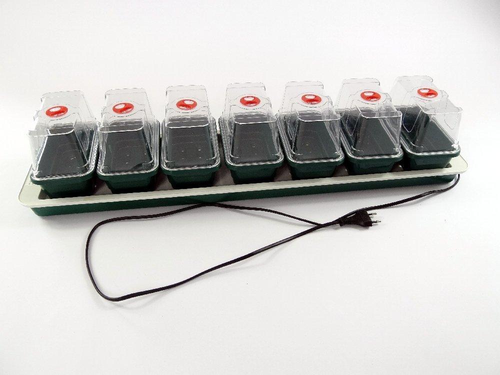 SAFLAX - Anzuchtkasten mit 7 Mini - Gewächshäusern - beheizt