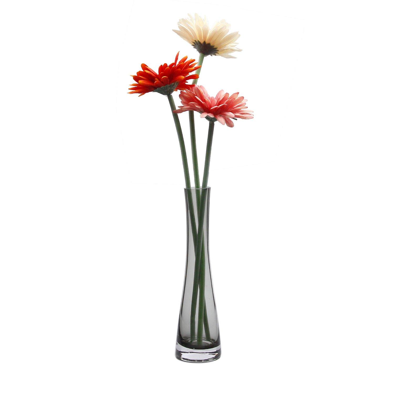 Rachels Choice 21.5cm Alto Jarr/ón de Cristal Para peque/ña Flor Decoraci/ón de Botella Transparente