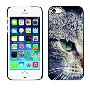 Paccase / SLIM PC / Aliminium Casa Carcasa Funda Case Cover - Green Eye Mongrel Shorthair Close Cat - Apple Iphone 5 / 5S