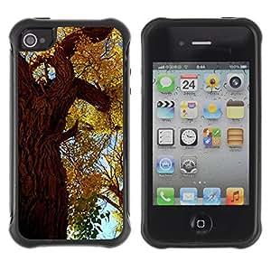 Híbridos estuche rígido plástico de protección con soporte para el Apple iPhone 4 / 4S - autumn tree leaves golden forest sky nature