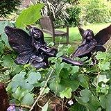 Fern and Ffion Fairies , Garden Ornament, Gnome, Garden Fairy, Troll, Imp