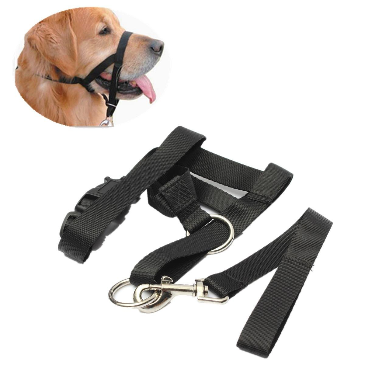 Canis Familiaris Changeable Gag - Dog Puppy Nylon Adjustable Buckle Muzzle Barking Ventilation Black - Frump Pawl Cad Tail Changeful Gun Firedog Bounder Andiron Chase Hound - 1PCs