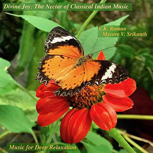 Divine Joy: The Nectar of Classical Indian - Music Nectar