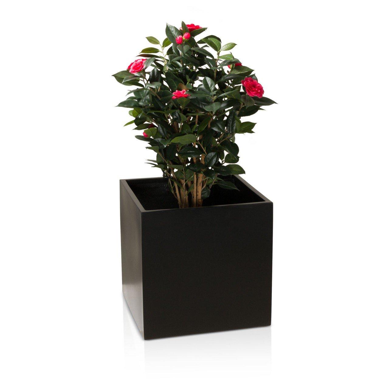 Pflanzkübel Blumenkübel CUBO Fiberglas Pflanztopf - Farbe: schwarz ...