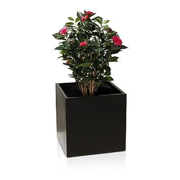 Bepflanzte Blumenkübel pflanzkübel blumenkübel cubo fiberglas pflanztopf farbe schwarz
