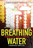 Front cover for the book Breathing Water by Timothy Hallinan