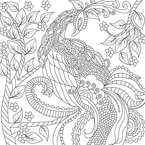 amazoncom best adult coloring book double size 140 pages with 68 designs amazing designs stress relieving patterns including mandalas - Amazing Coloring Pages