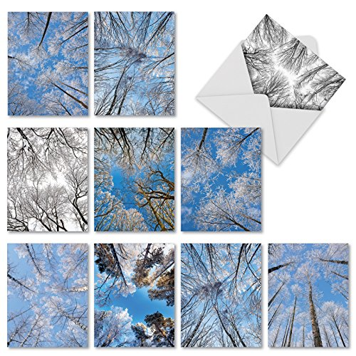 M9632OCB Snow Tops: 10 Assorted Blank All-Occasion Note Cards Featuring Snowy Branches on Upward Reaching Tree Limbs, w/White Envelopes.