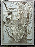 Downtown Charleston - 1898 wood engraved map