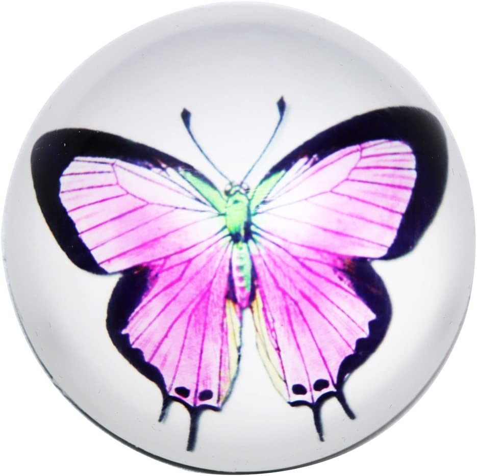 Waltz&F Crystal butterfly Paperweight Galss Globe Hemisphere Home Office Table Decoration 2.36""