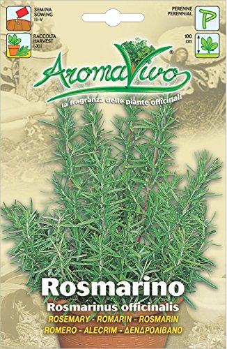 ITALIAN HERB ROSEMARY 0.15 GM ~ APRROX 140 SEEDS Hortus HPP03