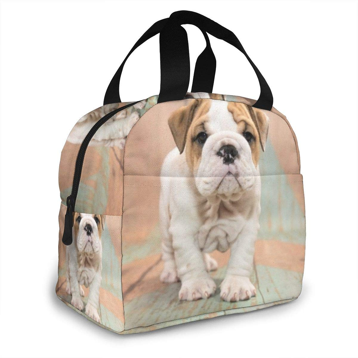 COCO-La Englische Bulldogge Mit Blauem Und Tan Gemustertem Holz Lunchpakete Lunch Tote Cooler Bag Lunch-Taschen K/ühltaschen Boxen