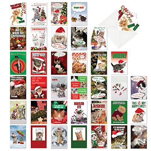 Christmas Kitties Collection': Assorted Box of 36 Hysterical Christmas Cards With cute cats ready for Christmas, with Envelopes (36 Designs, 1 Card Per Design) AC6668XSG-B1x36
