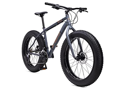 Amazon.com : SE Bicycles FatE Fat Tire Bicycle, Matte Grey, 19 ...
