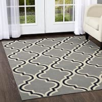Home Dynamix Premium Alanya Area Rug 21x35 Decorative Silver