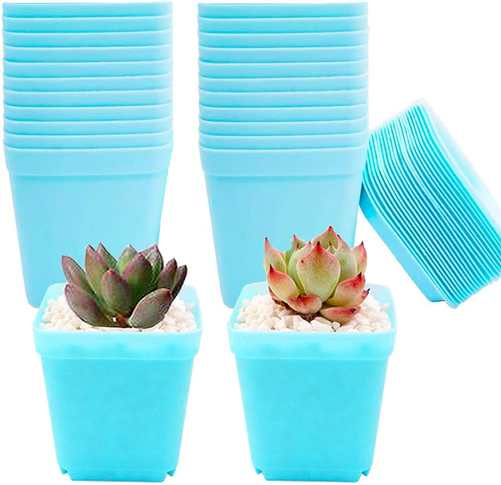 24 Pack Plastic Square Nursery Pots,Square Plants Nursery Pot,Succulent Planter Nursery Pots with Saucers for Garden,Indoor Outdoor Home Decor(Blue)