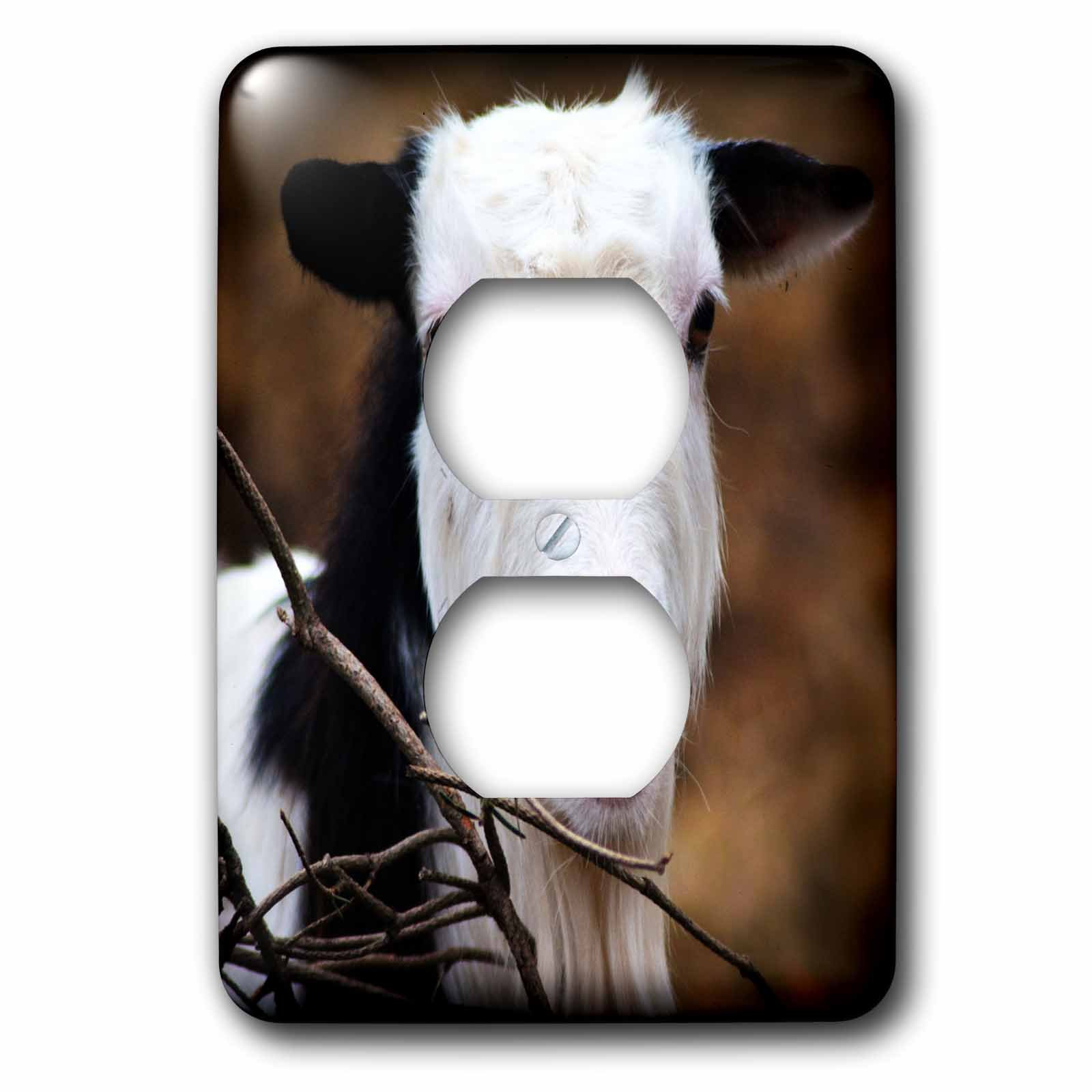 3dRose WhiteOaks Photography and Artwork - Goats - Heres Looking at you Kid is a photo of a goat looking very serious - Light Switch Covers - 2 plug outlet cover (lsp_265344_6)