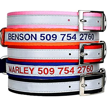 dog collars with metal buckles