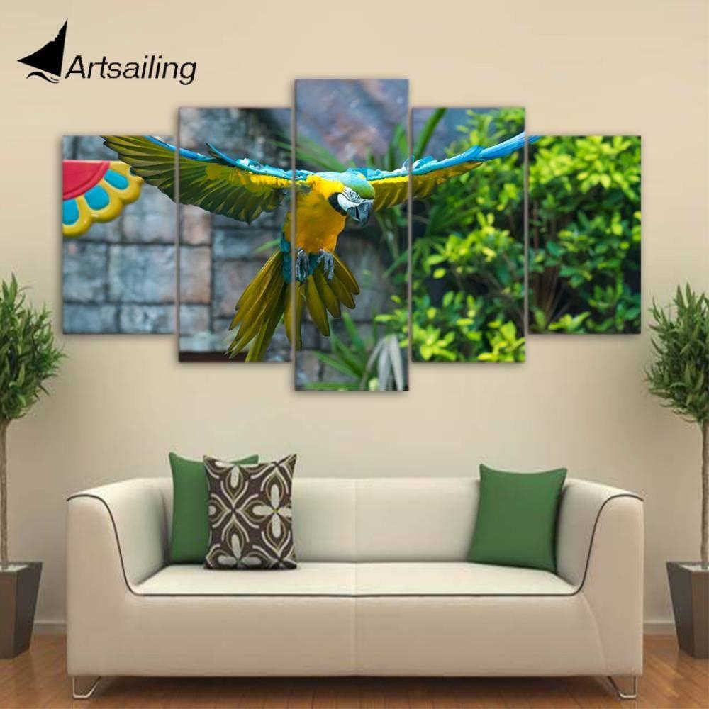 YIMENGSX HD Impreso 5 Piezas Lienzo Arte Loro Mascota Pintura Colorida Pluma Pájaro Pared Cuadros para la Sala CU-1753B, enmarcada, tamaño 2