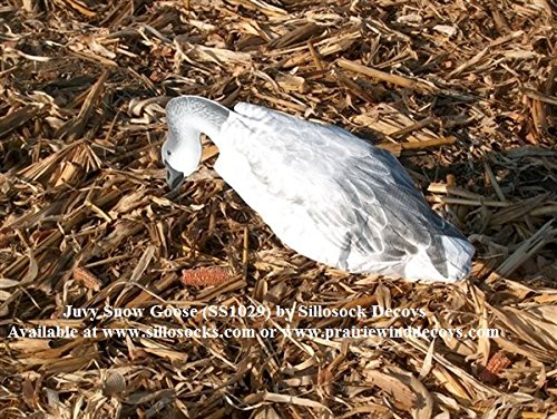 Sillosocks Juvy Snow Goose Decoy (12-Pack), White