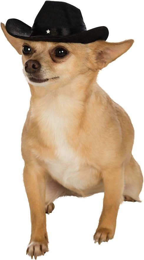 puppy hats amazon