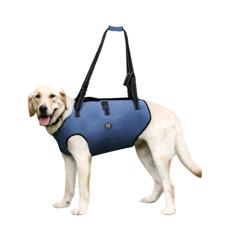 Arnes perros problemas de movilidad- Extra grande