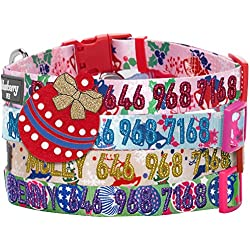 Blueberry Pet 4 Patterns Personalized Holiday Metallic Embroidery Dog Collar w/Name & Phone Number, Magical Joy, Small, Customized ID Collars for Small Dogs