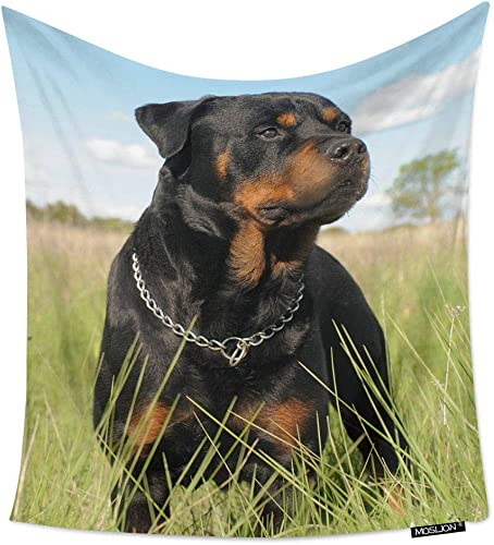 Moslion Room Art Wall Tapestry Rottweiler Cute Puppy Dog Cool Dorm Bedroom Decor Tapestry Wall Hanging for Men Boy Girl 60W X 90H Inches