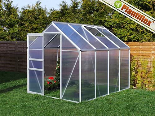 Invernadero con base 4, 75 m² – 190 x 250 cm Jardín Plantas Invernadero aluminio: Amazon.es: Jardín