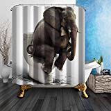 Prime Leader Fabric Shower Curtain Meditation Elephant Sitting on The Toilet Lid Mildew Resistant Polyester Fabric Bathroom Set with Hooks,Animal Home Decor,36''x72''