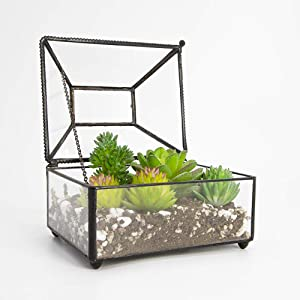 "Ferrisland Clear Geometric Glass Terrarium House Planter Container Indoor Fairy Garden Pot Makeup Organizer for Succulent Air Plants Wedding Coffee Table - 5.1""x4.1""x3.9"""