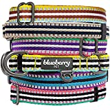 Leather Dog Collar - Blueberry Pet 3M Reflective Multi-colored Stripe Olive and Blue-gray Dog Collar, Neck 12