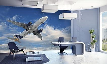 999store Indian Wallpaper Flying Aeroplane Hd Wallpaper Wall