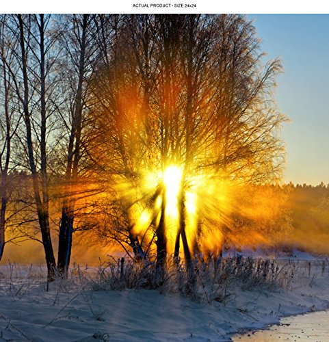WindowPix 24x24 Inch  Decorative Static Cling Window Film Blazing Tree on Icy Road . Printed on Clear for Window Glass panels. UV protection, Energy - Glasses Icy