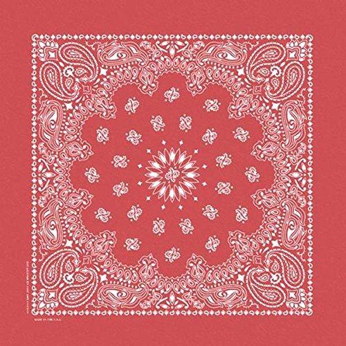 Carolina B22STO-00001 HAV-a-Hank Stonewash Bandannas, 20 by 20-Inch, Red Paisley