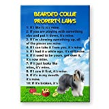 Bearded Collie Property Laws Fridge Magnet Funny