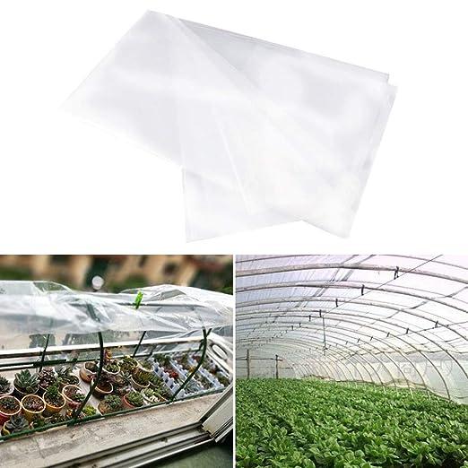 Película para invernadero, protección de invierno, para plantas ...