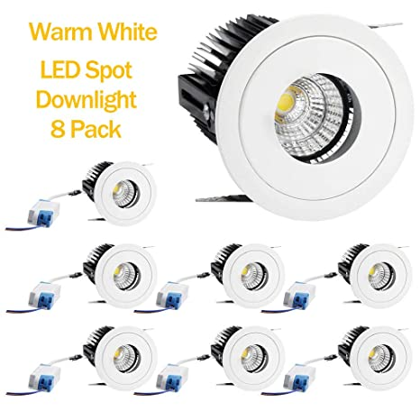 Adjustable 20w Warm White Led Indoor Roof Mounted Cob