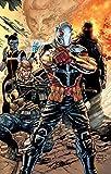 Suicide Squad Vol. 2: Going Sane (Rebirth)