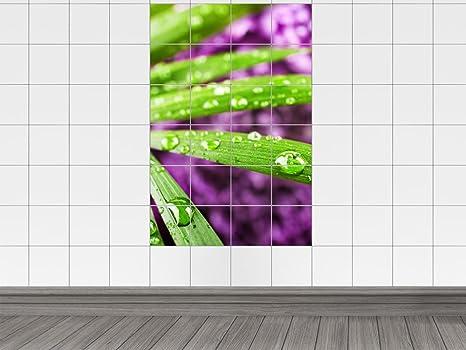 Piastrelle adesivo piastrelle immagine verde foglia palme wedel