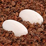 Pangea Hatch Premium Reptile Egg Incubation