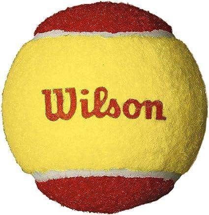 Wilson Starter Red Pelotas de tenis, pack de 12, para niños ...