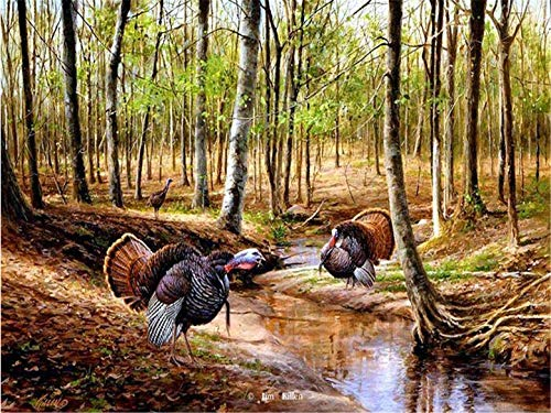 5D DIY Diamond Painting Full Square Drill Forest Turkey Rhinestone Embroidery for Wall Decoration 8x10 Inch
