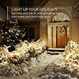 eufy 33 ft LED Decorative Lights Dimmable with Remote Control, Starlit String Lights, Indoor and Outdoor, for Holiday, Wedding, Party (Copper Wire, Warm White)