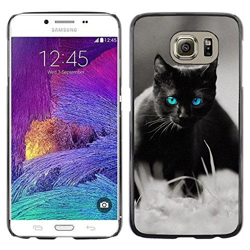 STPlus Gato en una caja Animal Carcasa Funda Rigida Para Samsung Galaxy S6 #13