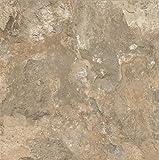 Armstrong FPD6106861 Mesa Stone Alterna Vinyl Tile Flooring, Beige