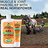 Absorbine Veterinary Liniment Gel Bundle, Value